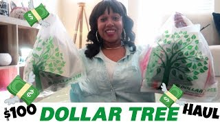 MY $100 DOLLAR DOLLAR TREE HAUL!!! WHAT DID I BUY? & MAKEUP SWATCHES