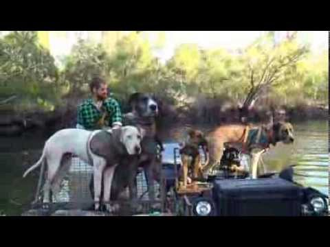 Hogs Dogs and Quads Trailer- Pig Hunting Pig Dog Wild Boar Action Aussie atv hunting fishing trophy