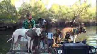 Hogs Dogs and Quads Trailer