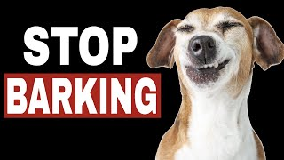 Sounds To Stop Dog Barking  |  HQ