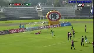 GOL Alfredo Ábalos / Deportes Temuco 1 Vs 0 Palestino - Campeonato Scotiabank 2018