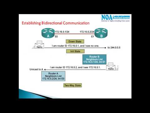 CCNA Routing & Switching :  OSPF seven stages