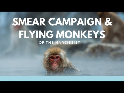 Smear Campaign & Flying Monkeys of the Narcissist