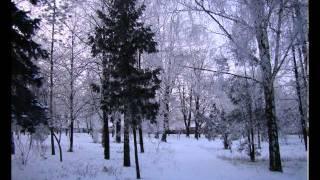 Ульяновка зимняя.avi(Ульяновка зимой,просто как в сказке!, 2011-04-04T19:47:21.000Z)