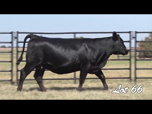 Pollard Farms Lot 66