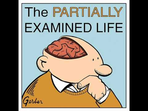 Partially Examined Life podcast - Gilligan on Feminist Theory & Moral Psychology