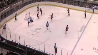 BGSU Hockey Highlights | UAH| (10/21/14)
