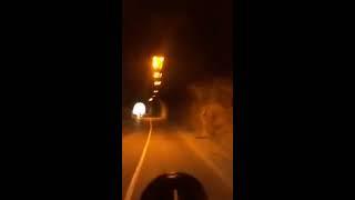 Makedon Polisine saydıran Keşanlı tır şoförümüz