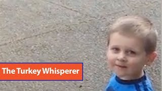 Little Boy Talks to Turkeys
