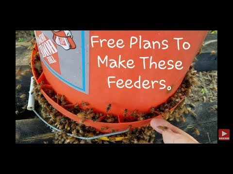 Free Plans How To Make Honeybee Bucket Feeder Mp3