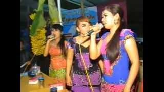 JENAWI : Asmara Guntur Madu Live in Tawangrejo