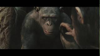 Best scene | Caesar raises his Kingdom | Rise of the Planet of the Apes (2011)