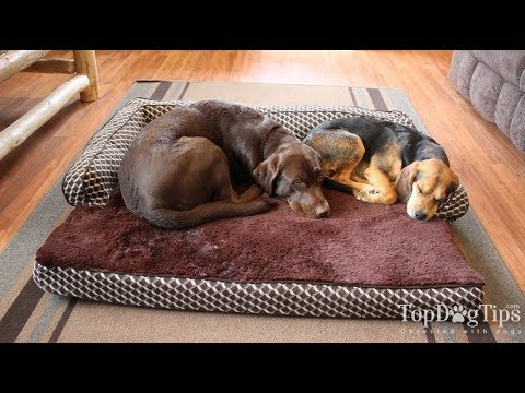 Dog Bed - Wholesaler & Wholesale Dealers in India