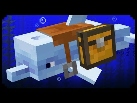 ✔ Minecraft: 10 Things You Didn't Know About Dolphins