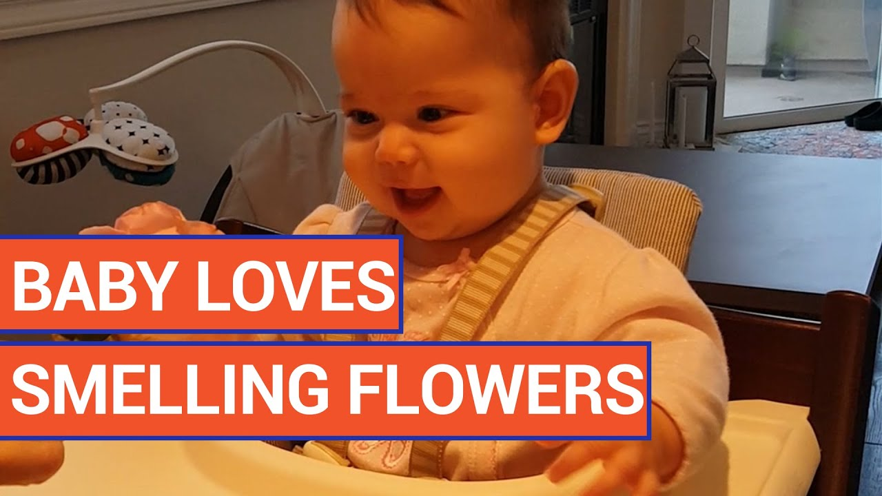 Sweet Baby Enjoys Smelling A Flower | Daily Heart Beat