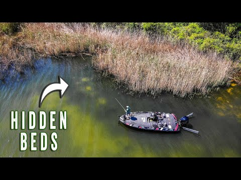 Bed Fishing For HIDDEN FISH (Spring Bass Fishing TIPS)