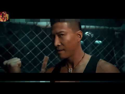 Chinese Cage Fighting Movie   Trending Viral Videos