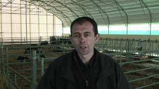 Cultivert - Bâtiments tunnel d'élevage