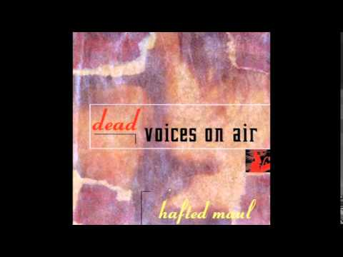 Dead Voices In The Air - Digging Stick