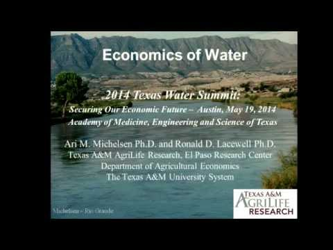 Economics of Water Panel at 2014 Texas Water Summit