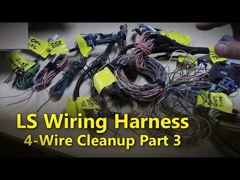 ls wiring harness part 3 project rowdy ep015 youtube 0411 PCM Wiring Harness