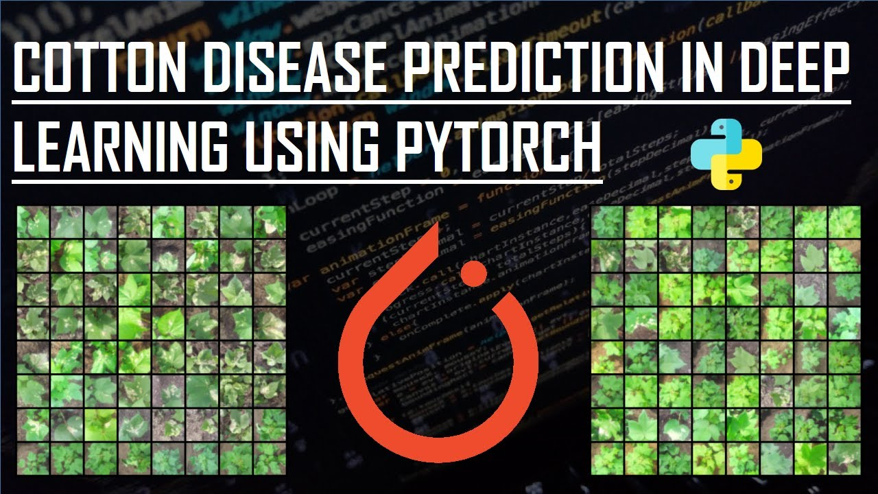 Deep Learning Project:Cotton Disease Prediction Using Pytorch l Web Apps in Flask