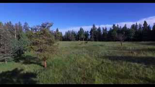 Valley Park Ranch - Colorado Ranch Retreat & Recreation Property - Ranches for sale, RMABrokers