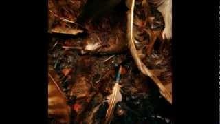 Nine Inch Nails-I Do Not Want This w/ lyrics