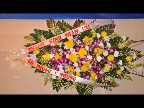 Dam Tang Benado Nguyen Viet Hung