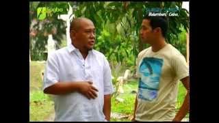 SUROY SUROY BALAMBAN - Episode 01 Segment 01