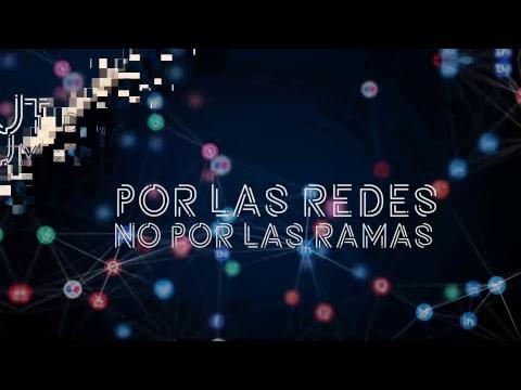POR LAS REDES, NO POR LAS RAMAS - Queer International Film Festival y tendencias