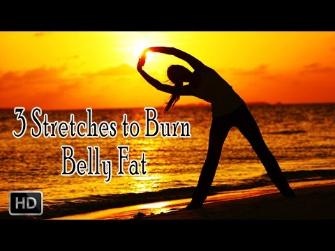 3-yoga-stretches-to-burn-belly-fat---beginners-stretches---weight-loss-&-fat-burning-exercise