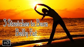 3 Yoga Stretches to Burn Belly Fat - Beginners Stretches - Weight Loss & Fat Burning Exercise