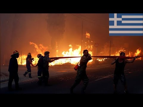 Fires in Greece claimed 80 lives