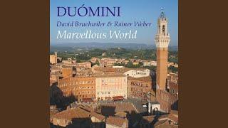 Duómini: Marvellous World