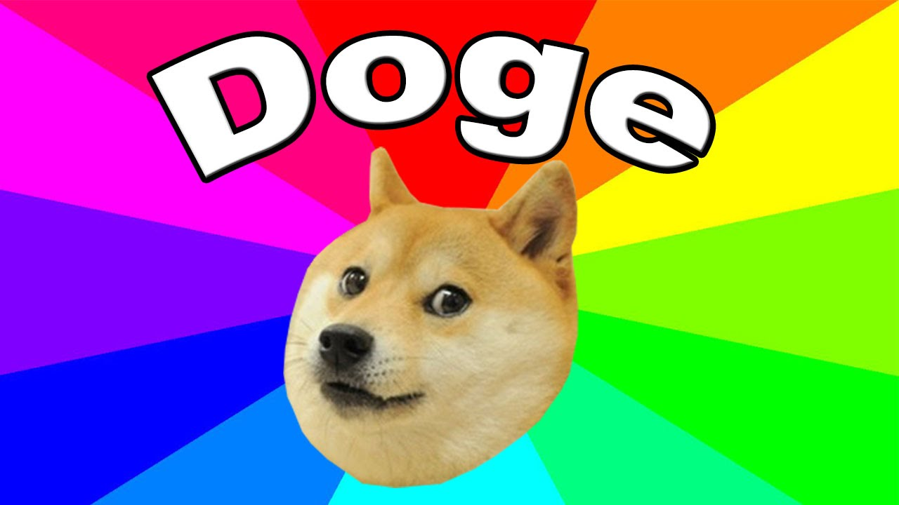 What Is Doge The History And Origin Of Dog Meme Explained