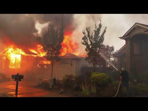Fire The Plan To Burn Up California 1 - Deborah Tavares