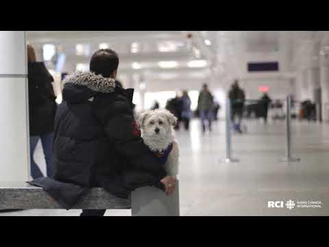 Aéroport International Pierre-Elliott-Trudeau, Montréal