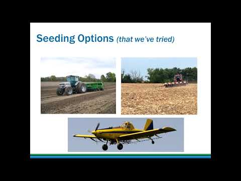 Cover Crop Economics for a Mid-Sized Crop and Livestock Operation - J. Alan Weber