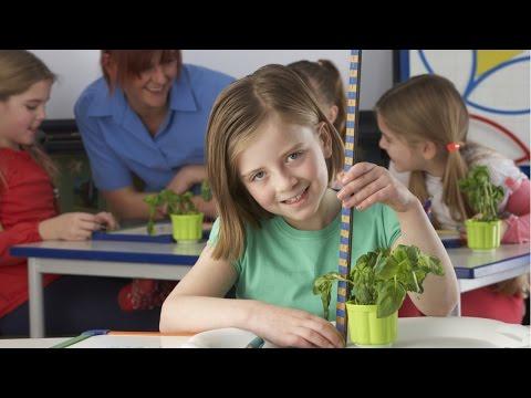 CPT Cursos na Área de Educação Infantil de YouTube · Duração:  4 minutos 21 segundos
