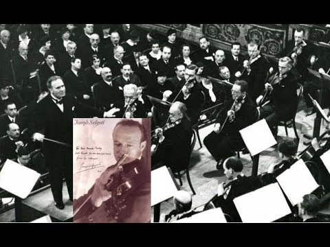 Beethoven:Violin Concerto  in D Opus61-Joseph Szigeti-Violin w.Bruno Walter&SymphonyOrchestra