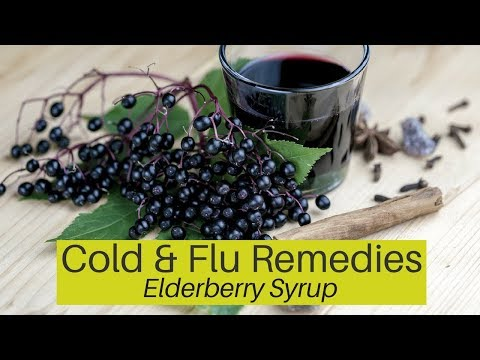 Herbal Remedies for Cold and Flu – Elderberry Syrup as Medicine