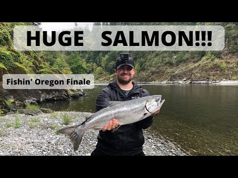 My First HUUUGE Salmon!!! Fishin' Oregon Finale