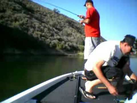 Download Castaic Lake...Wide Open
