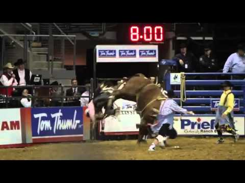 Texas Stampede Rodeo Bull Riding Bronco Busting Youtube