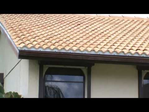 Roof Cleaning Do It Yourself Information by Chuck Bergman - DIY Safe!