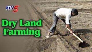 Tips For Dry Land Farming | Dr Narayana Swamy | Annapurna | Telugu News | TV5 News
