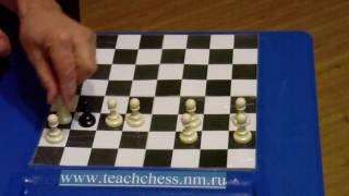 Фора 41. Урок 2. Как научить детей играть в шахматы
