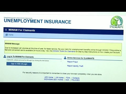 Help Me Hank Puts Michigan Unemployment Benefits System To The Test