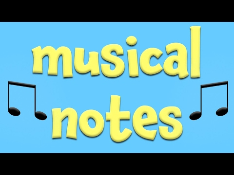 Musical Notes!Learning about music for Kids